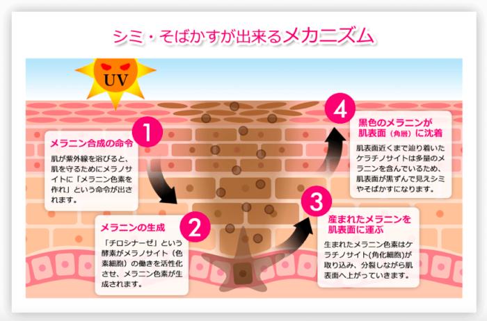 出典:https://k-nihondo.jp/