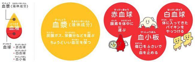 出典:http://www.aichi.bc.jrc.or.jp/