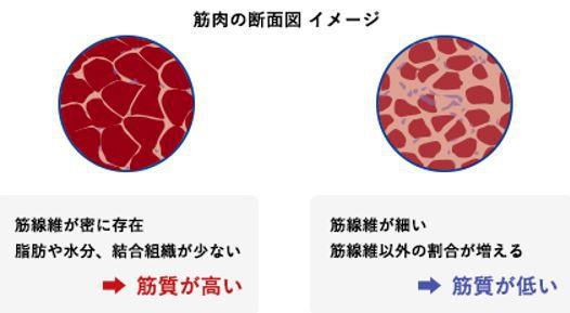 出典:http://www.tanita.co.jp/