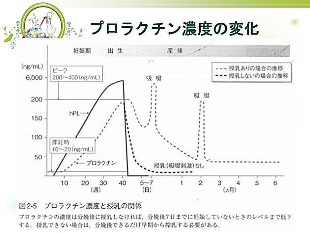 出典:http://taemushi.blog71.fc2.com/