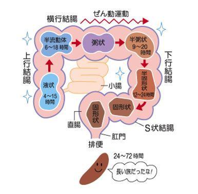 出典:http://www.taisho.co.jp/