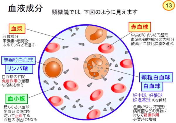 出典:http://hirokawa-tp.co.jp/