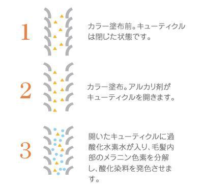 出典:http://shinichihonda.net/