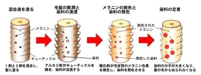 出典:http://www.kiriya-chem.co.jp/