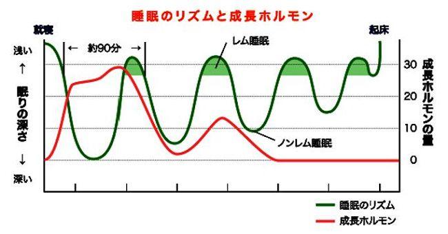 出典:http://www.shirokawa.jp/column/