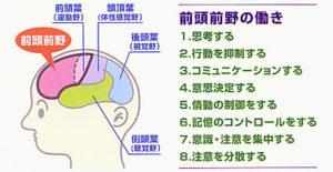 出典:http://hk-nalc.sakura.ne.jp/