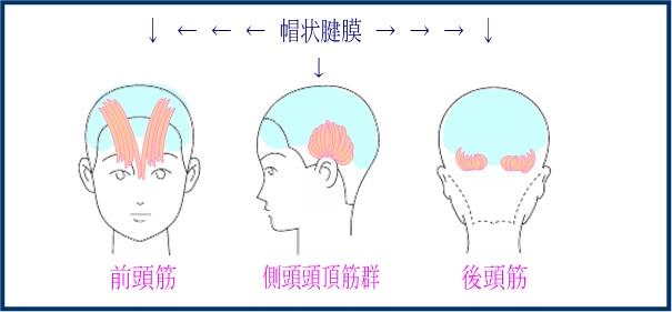 出典:http://kaminchu.com/