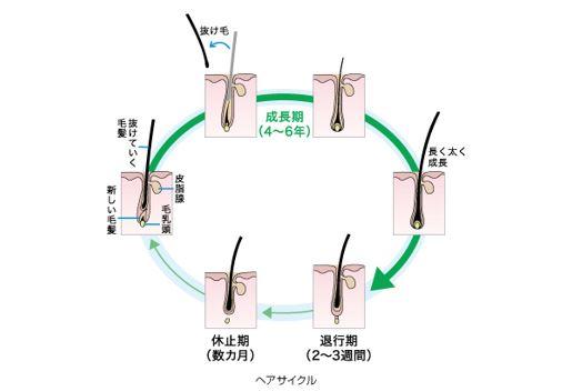 出典:http://www.kao.com/jp/