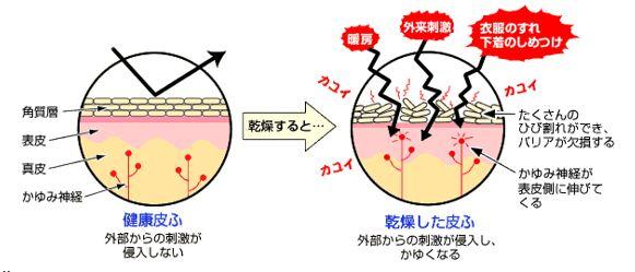 出典:http://www.ikedamohando.co.jp/
