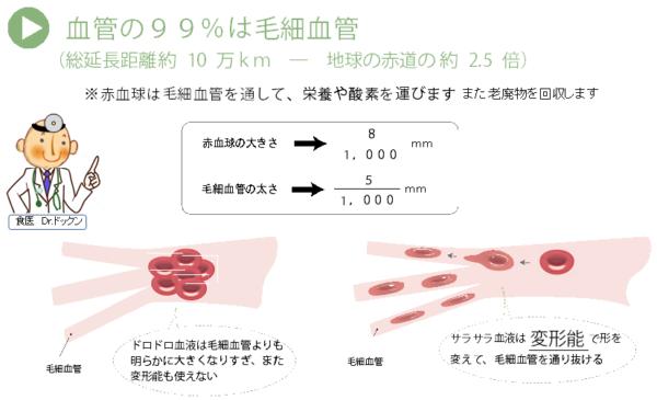 出典:http://kenkoukouso.com/