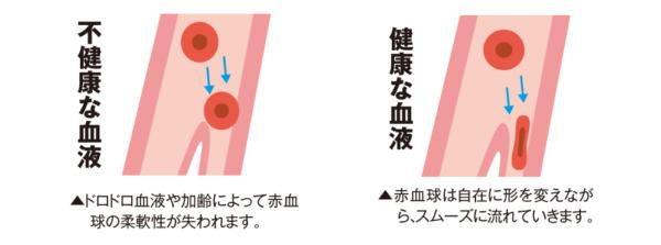 出典:https://www.kouraininjin.net/