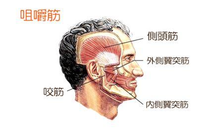 出典:https://gohongi-katakori.com/