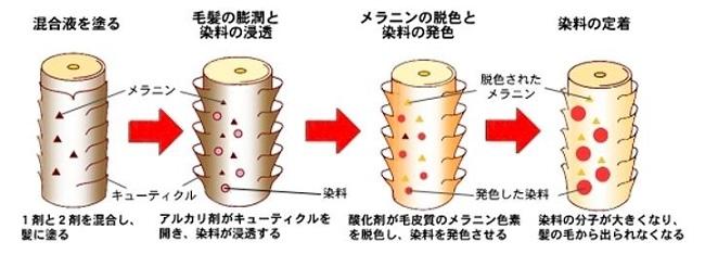 出典:http://keanu.wp.xdomain.jp/