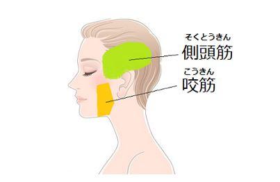 出典:http://hourei-sen.jp/