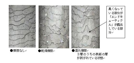 出典:http://www.kracie.co.jp/