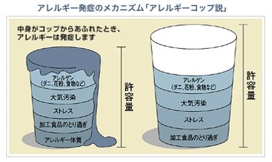 出典:http://www.ichijo.co.jp/