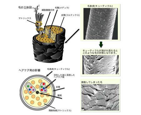 出典:http://www.aikei-yakuhin.co.jp/