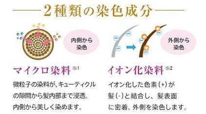 出典:https://www.lasana.co.jp/
