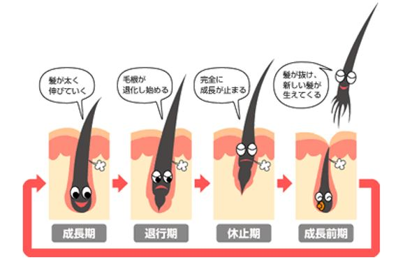 出典:http://blog.meltin-pot.gonna.jp/