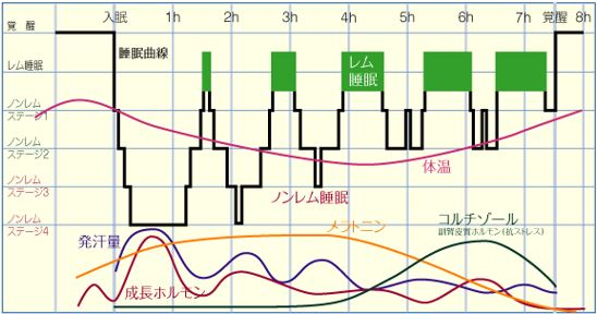 出典:http://natural-sleep.com/