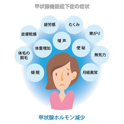 出典:http://www.kuma-h.or.jp/