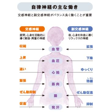 出典:http://health.suntory.co.jp/