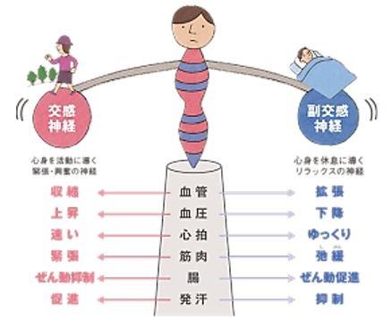 出典:http://rayris.jp/