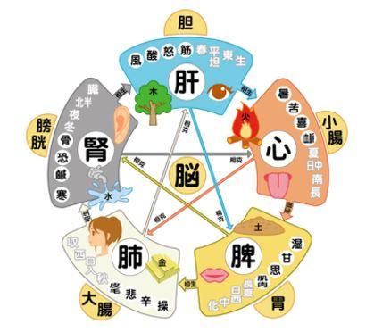 出典:http://sumito-seitai.com/