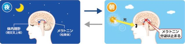 出典:http://www.tainaidokei.jp/