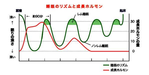出典:https://www.shirokawa.jp/column/