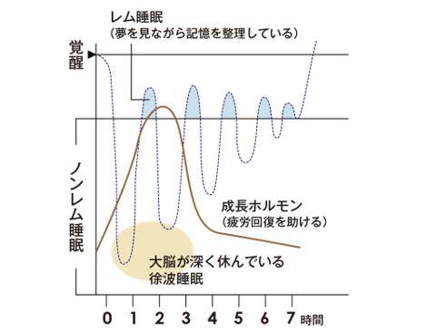 出典:http://scalp-d.angfa-store.jp/hair-doctor/