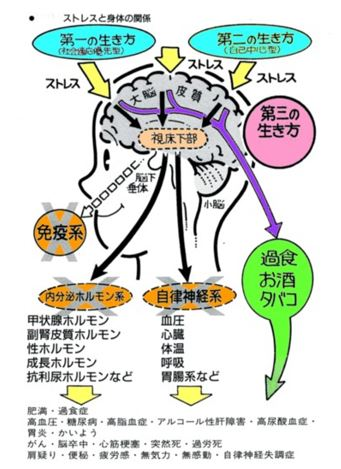 出典:http://www.fyu.jp/dojo/