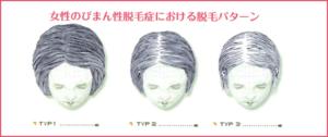 出典:http://www.shinohara-hifuka.com/