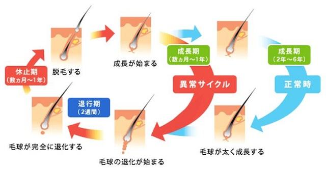 出典:http://eonet.jp/health/