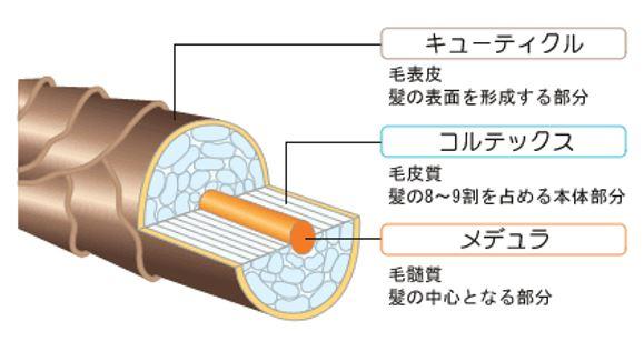 出典:http://www.shoku-do.jp/