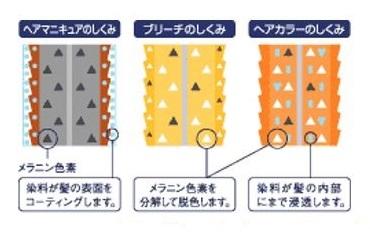 出典:http://otokotoonna.net/