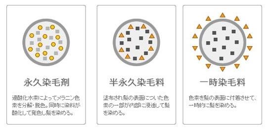 出典:http://www.pandp.co.jp/