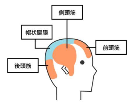 出典:http://bunshun.jp/