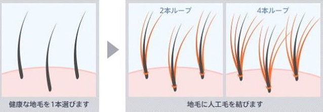 出典:http://www.me.ccnw.ne.jp/simple/