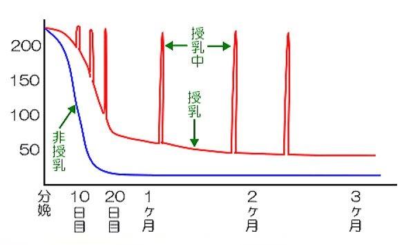 出典:http://www.internethospital.net/