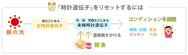 出典:http://www.karadakarute.jp/tanita/