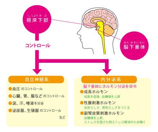 出典:http://www.peridot-hiroba.net/