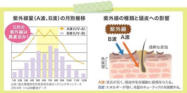 出典:https://www.my-nature.jp/