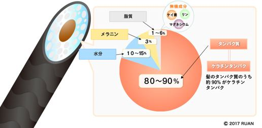 出典:https://www.ruan.co.jp/column/