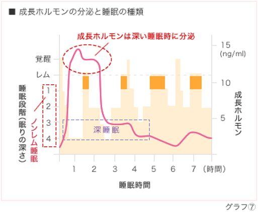 出典:http://sp-kodama.com/