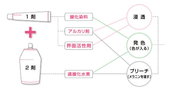 出典:http://www.demi.nicca.co.jp/index.pl