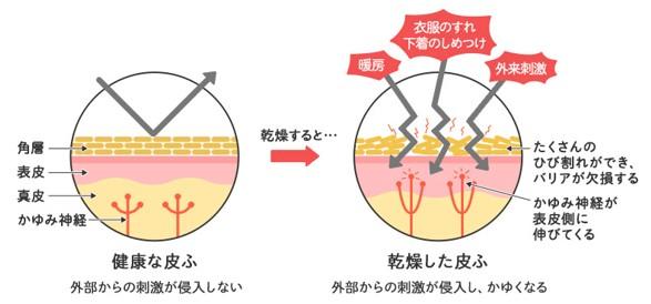 出典:https://www.ikedamohando.co.jp/jyouhoukan/