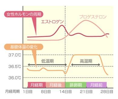 出典:http://www.bodybook.jp/