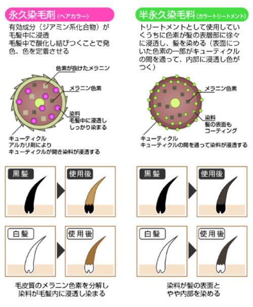 出典:http://www.tenstar.jp/