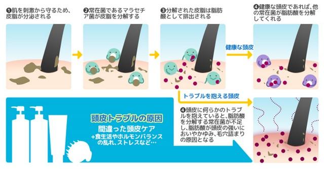 出典:https://www.angfa-store.jp/